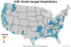 amphibians_usa_usa_small_thumb