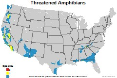 amphibians_usa_threatened_thumb