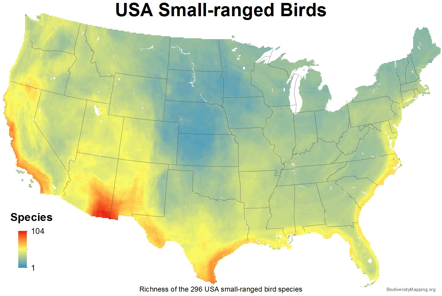 birds_usa_usa_small_large