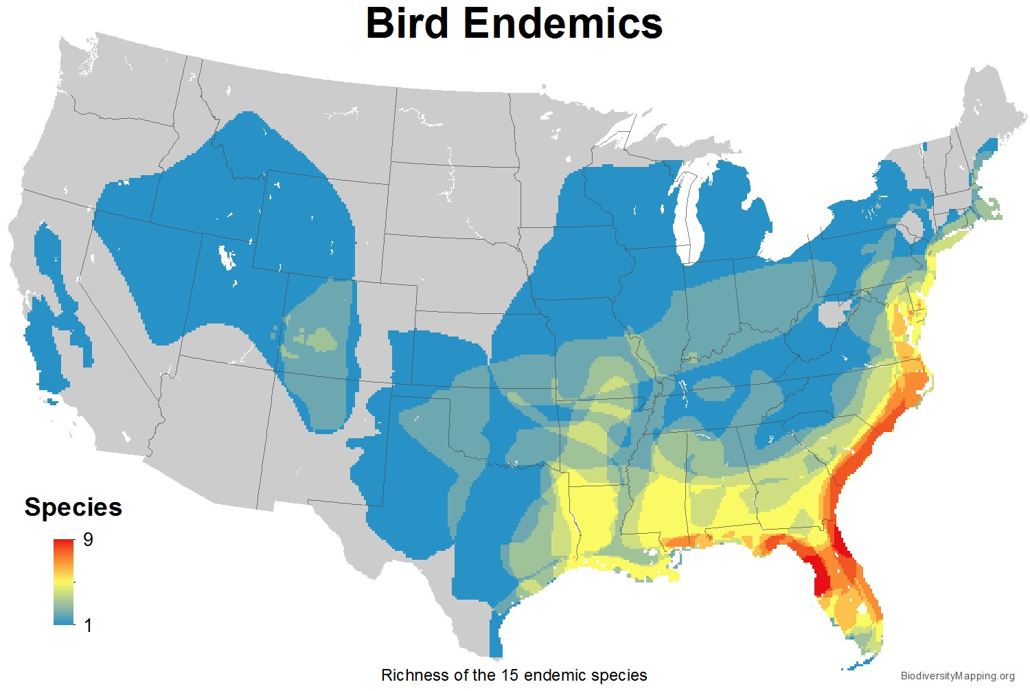 birds_usa_endemics_large