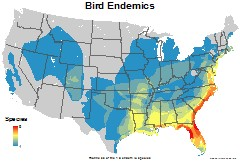 birds_usa_endemics_thumb