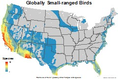 birds_usa_globally_small_thumb