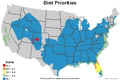 birds_usa_priorities_thumb