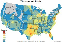 birds_usa_threatened_thumb
