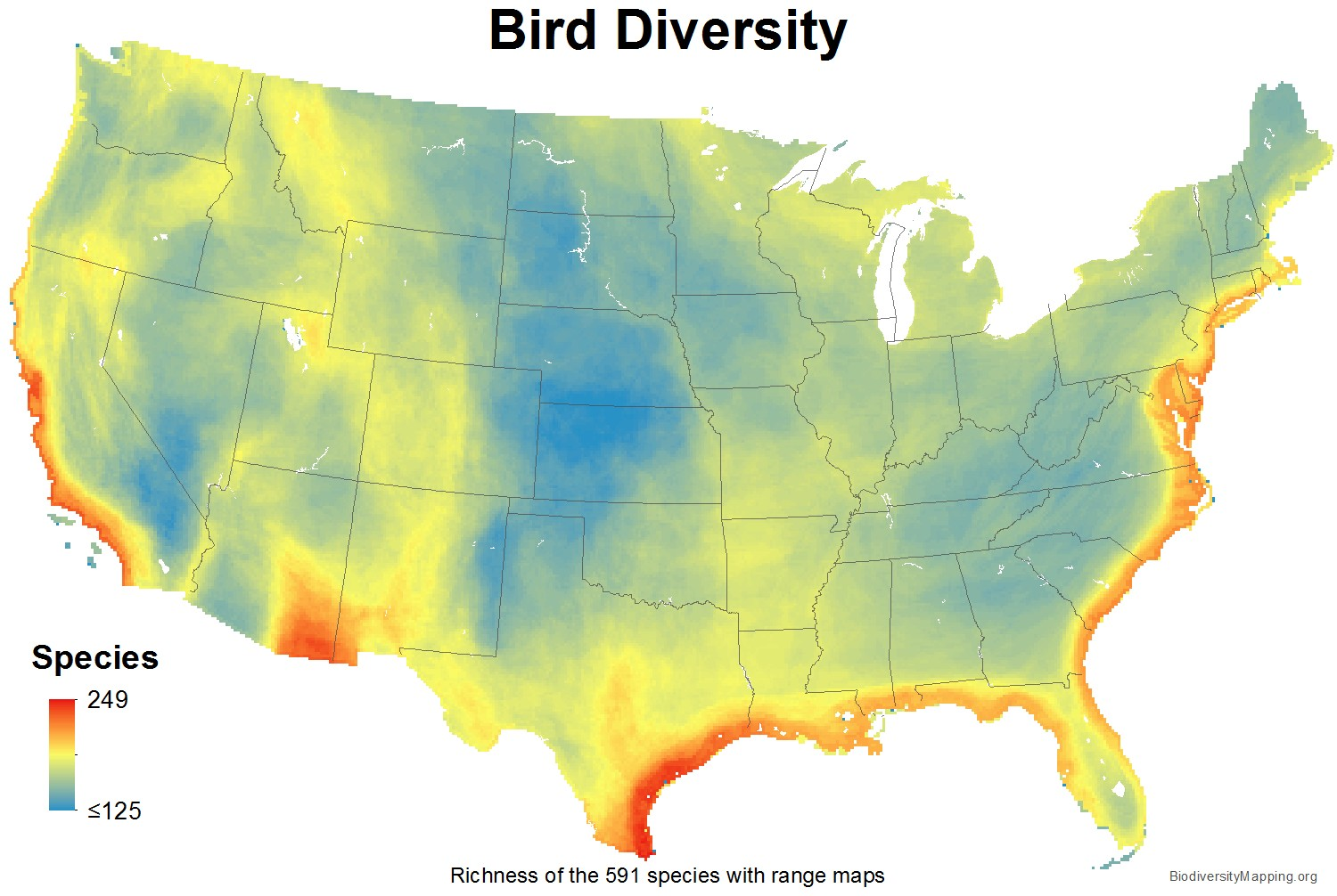 birds_usa_total_richness_large