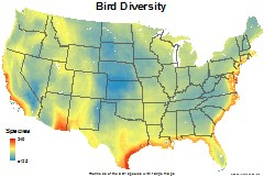 birds_usa_total_richness_thumb