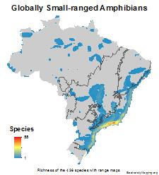 brazil_amphibians_small_ranged_thumb