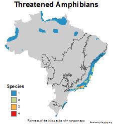 brazil_amphibians_threatened_thumb