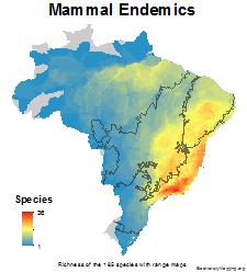 brazil_mammals_endemics_thumb