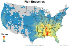 fish_usa_endemics_thumb