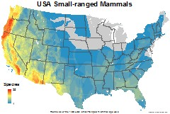mammals_usa_usa_small_thumb