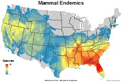 mammals_usa_endemics_thumb