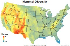 mammals_usa_total_richness_thumb