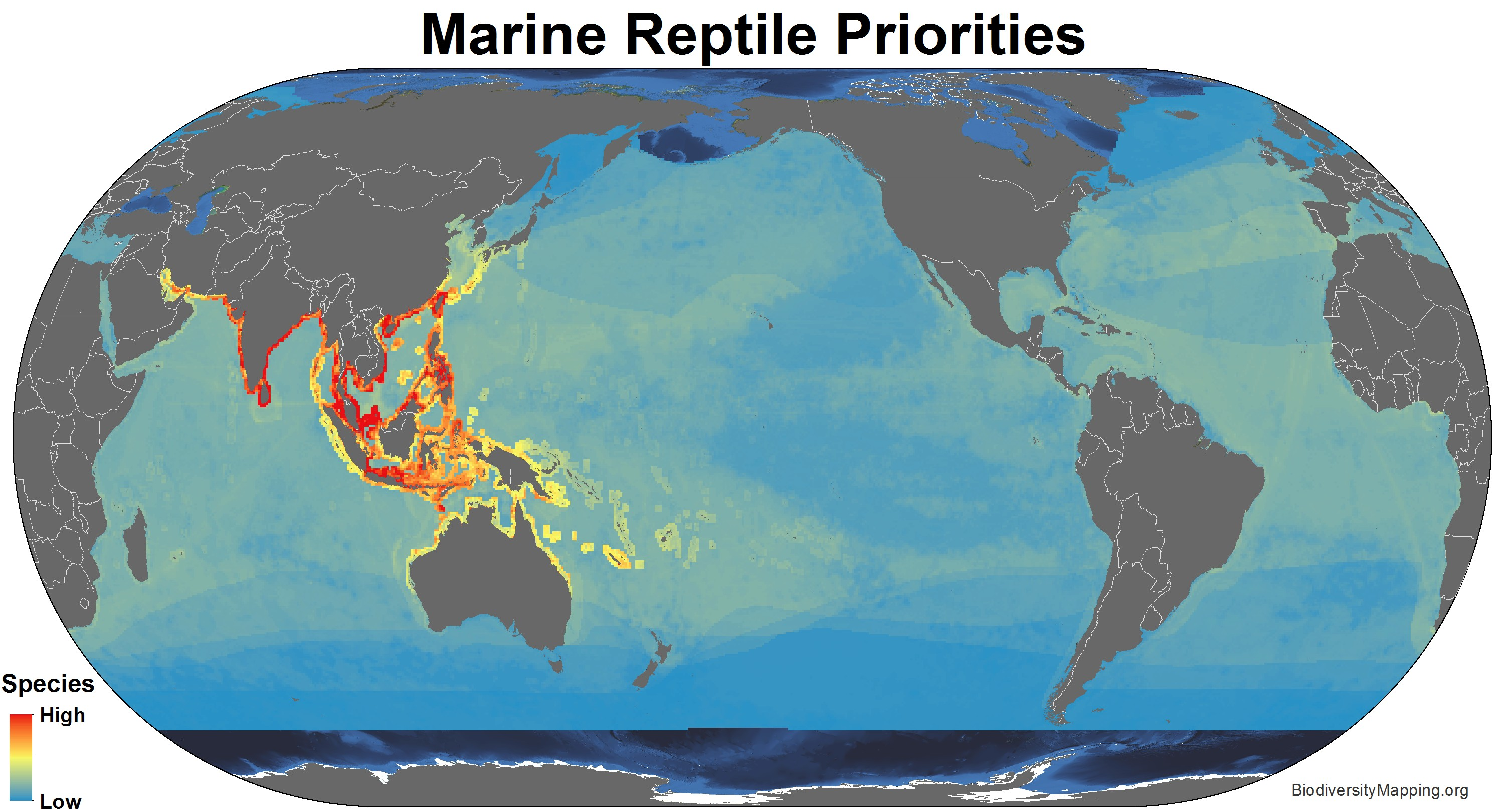 marine_reptiles_priorities