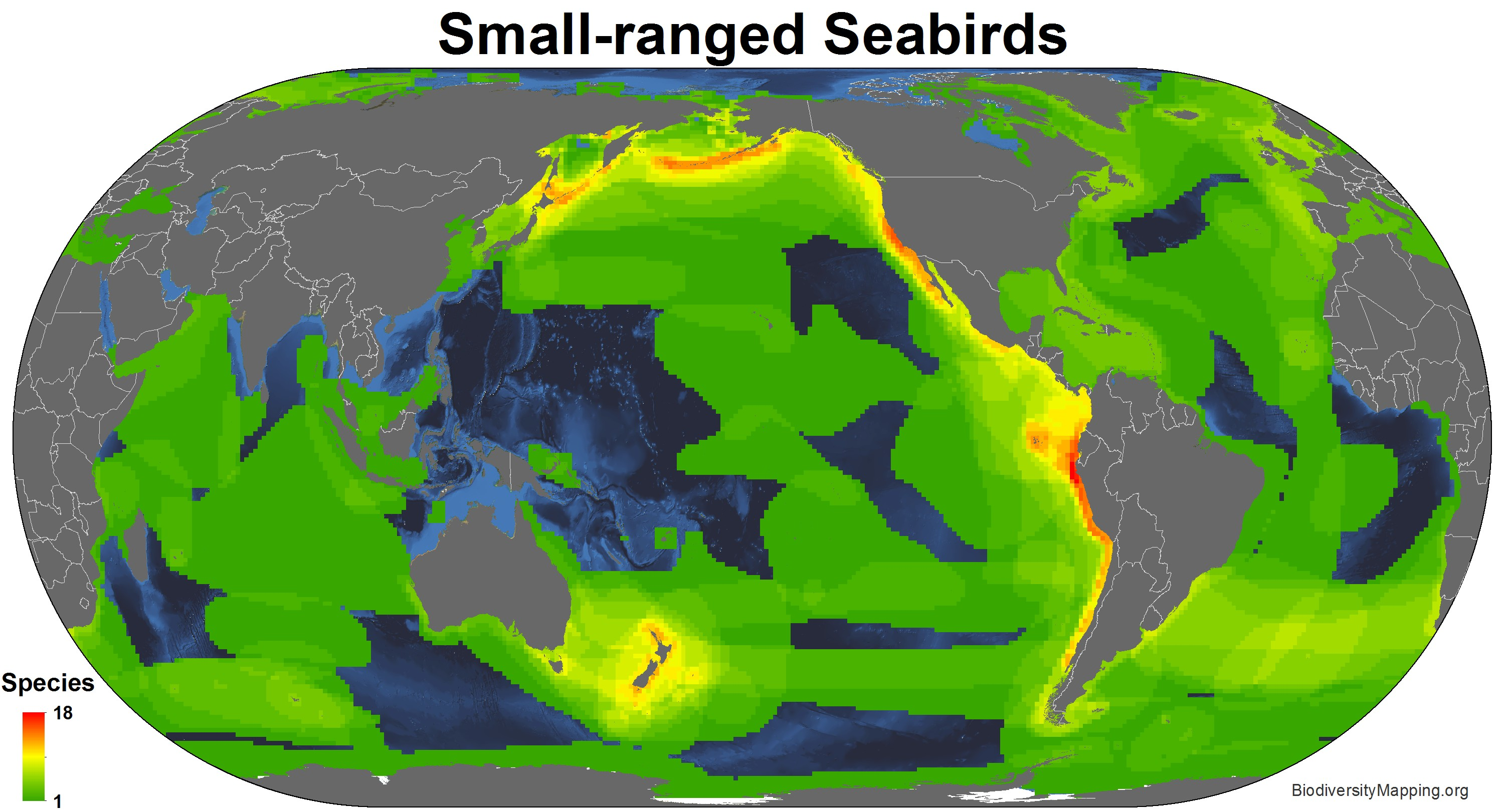 seabirds_small_ranged
