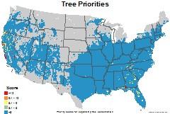 trees_usa_priorities_thumb